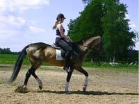 summer2004